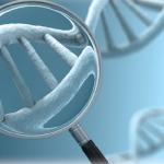 Best DNA